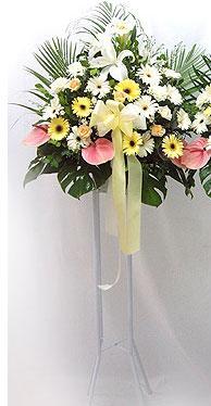 Rize çiçek gönderme   perförje çiçegi dügün çiçekleri