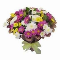 Rize çiçek online çiçek siparişi  Mevsim kir çiçegi demeti