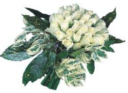 Rize çiçek gönderme sitemiz güvenlidir  9 Beyaz gül Özel kisiler için