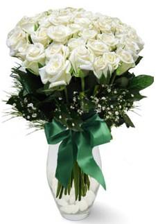 19 adet essiz kalitede beyaz gül  Rize İnternetten çiçek siparişi