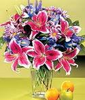 Rize çiçekçiler  Sevgi bahçesi Özel  bir tercih