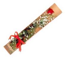 1 adet kirmizi gül  Rize çiçek online çiçek siparişi