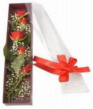 kutu içinde 5 adet kirmizi gül  Rize çiçek gönderme sitemiz güvenlidir