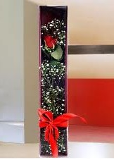 kutu içinde tek kirmizi gül  Rize çiçek siparişi sitesi