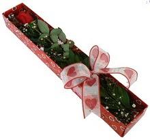 Tek kirmizi gül kutu içerisinde  Rize çiçek siparişi vermek