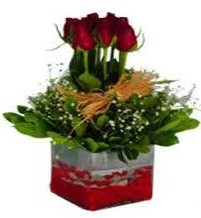 Rize hediye sevgilime hediye çiçek  7 adet mika yada cam vazoda gül tanzimi