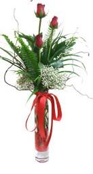 Rize online çiçekçi , çiçek siparişi  3 adet kirmizi gül vazo içerisinde