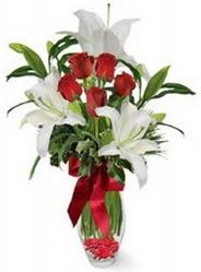 Rize çiçek yolla  5 adet kirmizi gül ve 3 kandil kazablanka