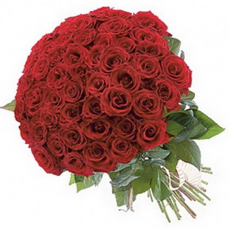 Rize çiçek siparişi vermek  101 adet kırmızı gül buketi modeli