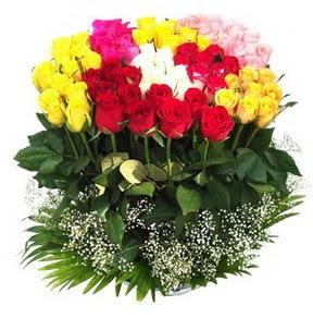Rize çiçekçiler  51 adet renkli güllerden aranjman tanzimi