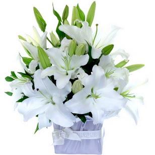 Rize anneler günü çiçek yolla  2 dal cazablanca vazo çiçeği
