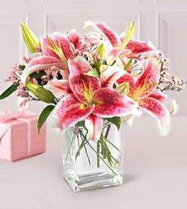 2 dal kazablanka görsel vazosu  Rize online çiçekçi , çiçek siparişi