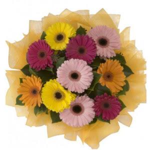 Rize uluslararası çiçek gönderme  11 adet karışık gerbera çiçeği buketi