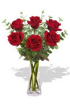 Rize yurtiçi ve yurtdışı çiçek siparişi  6 kırmızı gül vazosu