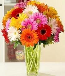 Rize internetten çiçek satışı  15 adet gerbera çiçek vazosu