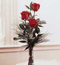 Rize çiçek yolla , çiçek gönder , çiçekçi   Vazoda 3 adet güzel gül