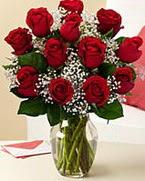 Sevgilime hediye 9 adet 1.ci kalite gül  Rize hediye çiçek yolla
