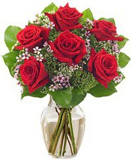 Kız arkadaşıma hediye 6 kırmızı gül  Rize çiçek gönderme sitemiz güvenlidir