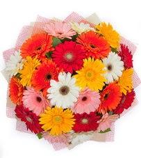 15 adet renkli gerbera buketi  Rize online çiçek gönderme sipariş