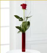 Vazo içerisinde 1 adet kırmızı gül  Rize çiçek gönderme sitemiz güvenlidir