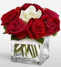 Tek aşkımsın çiçeği 8 kırmızı 1 beyaz gül  Rize çiçek , çiçekçi , çiçekçilik