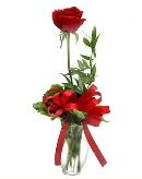 vazo içerisinde 1 adet kırmızı gül  Rize çiçek online çiçek siparişi