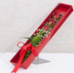 Kutu içerisinde 3 adet kırmızı gül  Rize çiçek gönderme