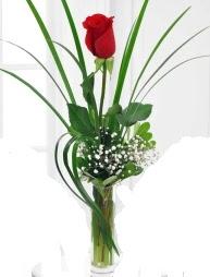 Cam içerisinde 1 kırmızı gül  Rize 14 şubat sevgililer günü çiçek
