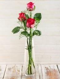 Cam içerisinde 3 kırmızı gül  Rize çiçek servisi , çiçekçi adresleri