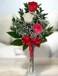 Camda 2 kırmızı 1 beyaz gül  Rize kaliteli taze ve ucuz çiçekler
