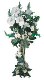 Rize çiçekçiler  antoryumlarin büyüsü özel