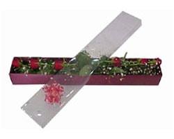Rize hediye çiçek yolla   6 adet kirmizi gül kutu içinde