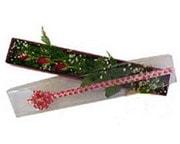 Rize güvenli kaliteli hızlı çiçek  3 adet gül.kutu yaldizlidir.