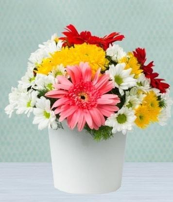 Seramik Vazoda Gelbera ve Papatya  Rize hediye sevgilime hediye çiçek
