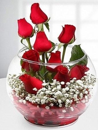 Kırmızı Mutluluk fanusta 9 kırmızı gül  Rize online çiçekçi , çiçek siparişi