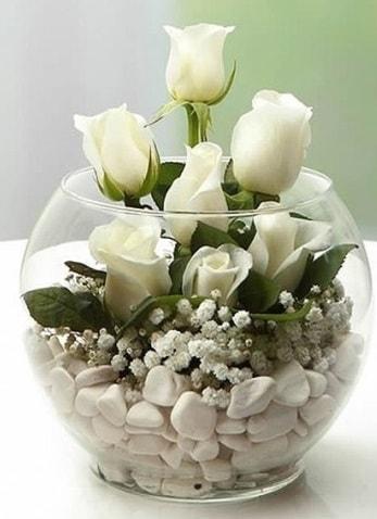 Beyaz Mutluluk 9 beyaz gül fanusta  Rize online çiçekçi , çiçek siparişi