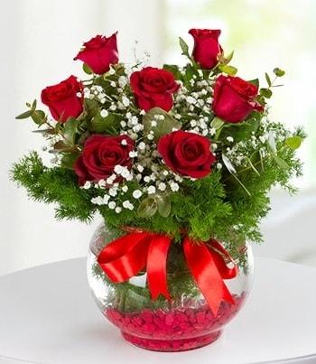 fanus Vazoda 7 Gül  Rize çiçek mağazası , çiçekçi adresleri