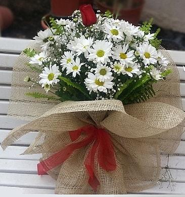 Papatya 1 adet kırmızı gül buketi  Rize İnternetten çiçek siparişi
