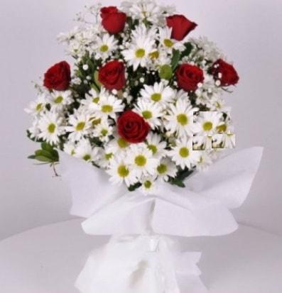 7 adet kırmızı gül ve papatyalar krizantem  Rize çiçek yolla , çiçek gönder , çiçekçi