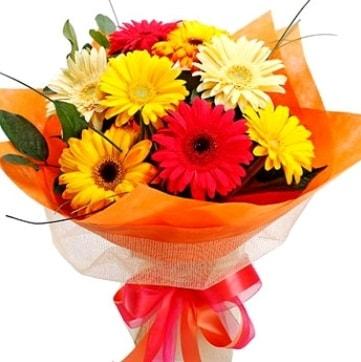 9 adet karışık gerbera buketi  Rize çiçek mağazası , çiçekçi adresleri