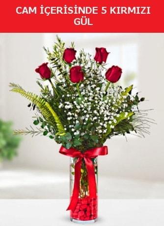 Cam içerisinde 5 adet kırmızı gül  Rize online çiçekçi , çiçek siparişi
