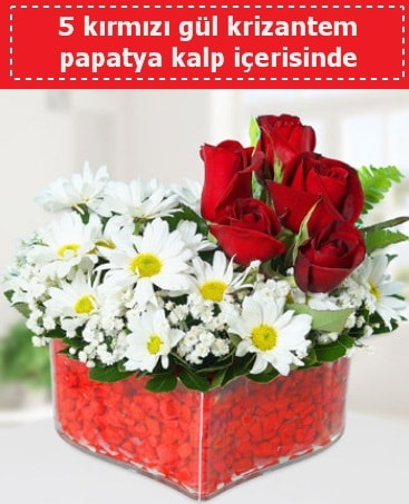 mika kalp içerisinde 5 kırmızı gül papatya  Rize hediye sevgilime hediye çiçek