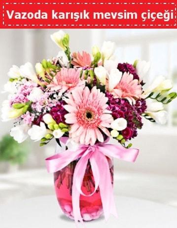 Vazoda karışık mevsim çiçeği  Rize çiçek mağazası , çiçekçi adresleri