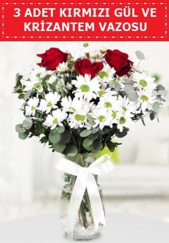 3 kırmızı gül ve camda krizantem çiçekleri  Rize hediye sevgilime hediye çiçek