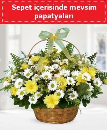 Sepet içerisinde mevsim papatyaları  Rize kaliteli taze ve ucuz çiçekler