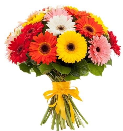 Gerbera demeti buketi  Rize çiçek servisi , çiçekçi adresleri