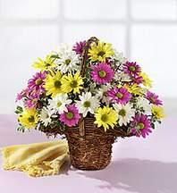 Rize İnternetten çiçek siparişi  Mevsim çiçekleri sepeti